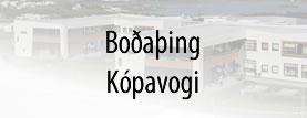 Boðaþing - Kópavogi